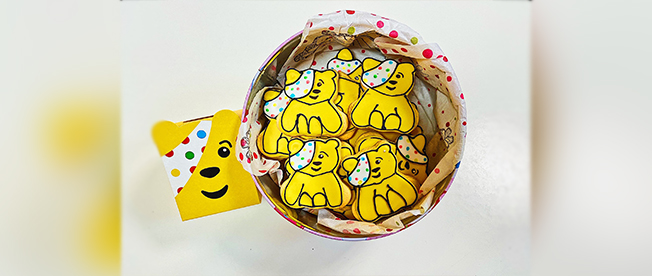 pudsy-biscuits-main-content-size.jpg